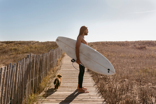 surfer and dog walking on beach deck
