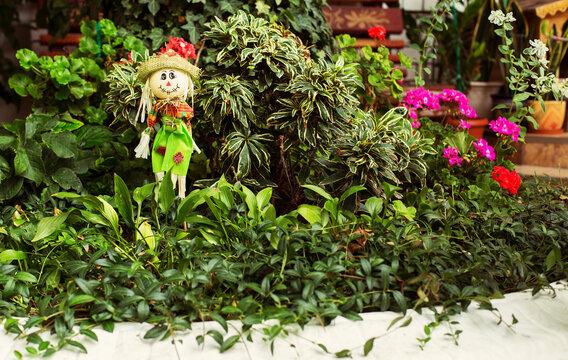 Patio with flower garden in a guest house. Russia, Black Sea, Krasnodar Region, Anapa