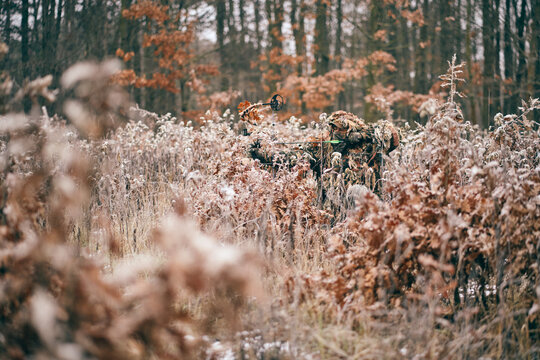 Bow hunter in ghillie suit