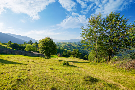 mountainous rural landscape. trees on hills and grassy fields rolling in to the distant ridge beneath a bright sky with clouds. beautiful summer scenery in morning light