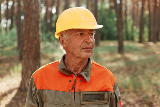 Portrait of mature woodsman posing in forest in open air and looking away with pensive expression, wearing uniform and yellow helmet, log inspecting territory.