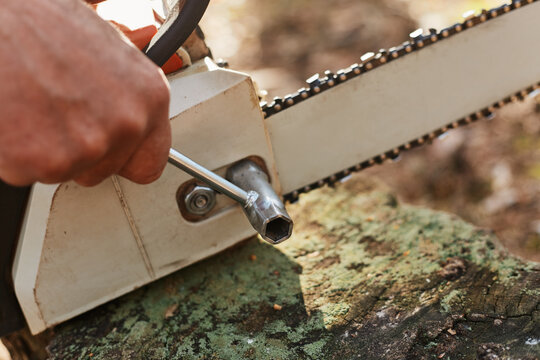 Close up shot of saw and worker hands, woodsman repairing chainsaw with tool, preparing equipment for deforestation, planned professional logging.