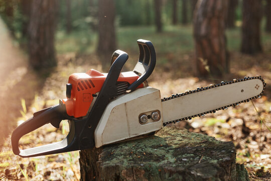 Outdoor closeup shot of chainsaw on stump in wood, professional equipment for cutting wood, deforestation, logging, special tool for working with forestry.