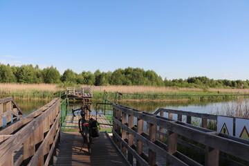 Fototapeta Kładki w Nowym Lipsku w dolinie rzeki Biebrzy obraz
