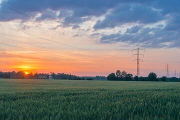 Obraz Linia elektryczna na tle wieczornego nieba. - fototapety do salonu