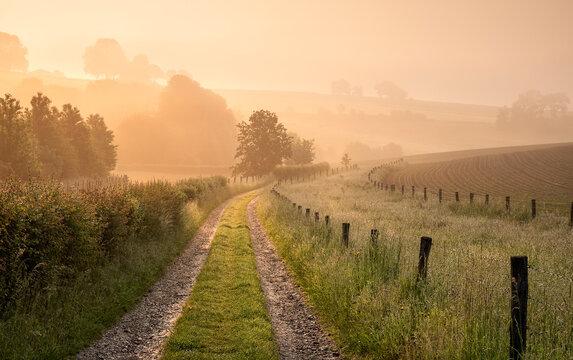 countryside road on Belgian farmland at sunrise