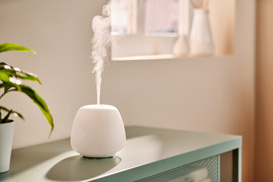 Modern humidifier on table in morning