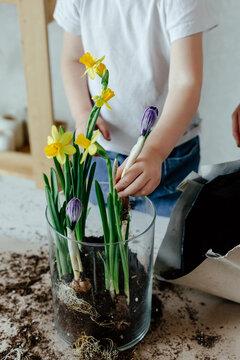 Little gardener planting spring flowers
