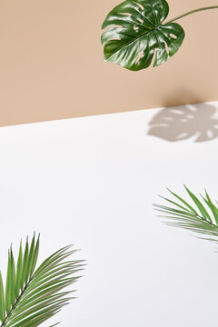 Side view green tropical palm leaf. Still life with sunlight and harsh shadow. White empty table and beige wall. Minimal summer concept with monstera palm leaf and shadow. Beige wall background.