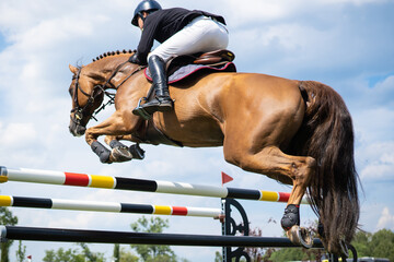 Equestrian Sports photo themed: Horse jumping, Show Jumping, Horse riding,