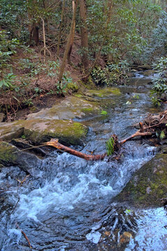 Creek gently flowing over rocks in the Cohutta Wilderness mountains in North Georgia