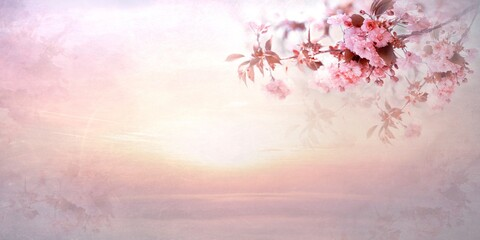 Panoramic shot of cherry blossoms with sunset background and copy space