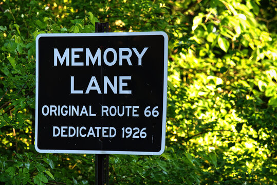 Closeup shot of Memory Lane road sign on the bushes under sunlight