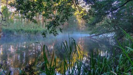 Fototapeta Krutynia rzeka River poranek wschód słońca obraz