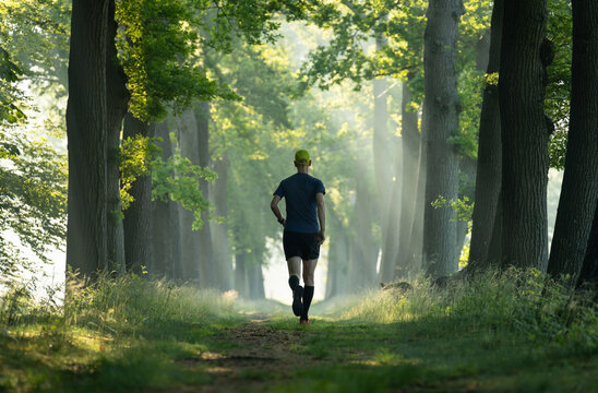 A man running in a lane of tree's on a sunny, summer's morning.