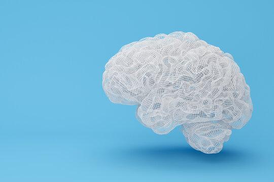 Brain wire frame 3D illustration