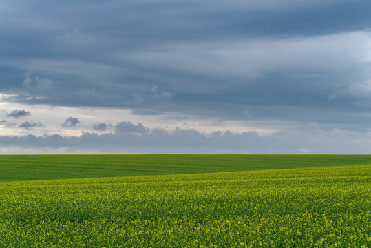 Agricultural landscape Podilia region, South-Western Ukraine