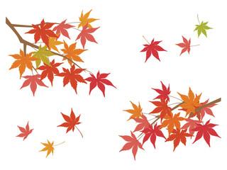 Fototapeta 風になびく紅葉 秋のイラスト素材 obraz