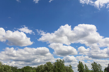 Fototapeta Beautiful cloudscape over tree line on a bright summer day. obraz