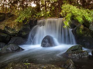 Fototapeta Mały wodospad w Ogrodzie Japońskim we Wrocławiu obraz