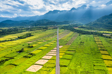 Aerial view of beautiful terraced rice field and road .Taitung ,Taiwan.