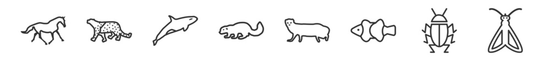 outline set of animals line icons. linear vector icons such as wild horse, snow leopard, orca, sable, mongoose, moth. vector illustration. - fototapety na wymiar
