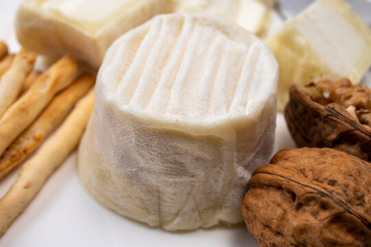 Cheese collection, soft goat French cheese with mold crottin de Chavignol produced in Loire Valley