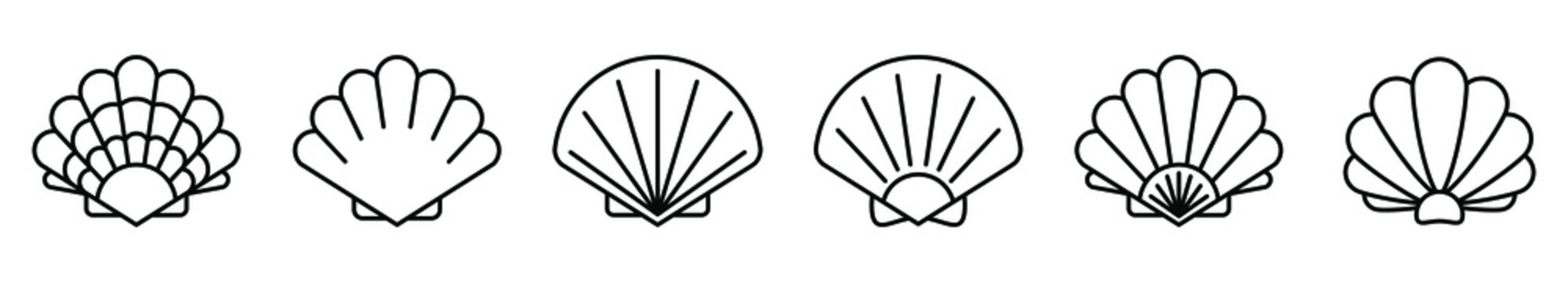 Sea shell icon. Set of linear pearl shell icons. Vector illustration. Shell vector icons. Black linear sea shell icons