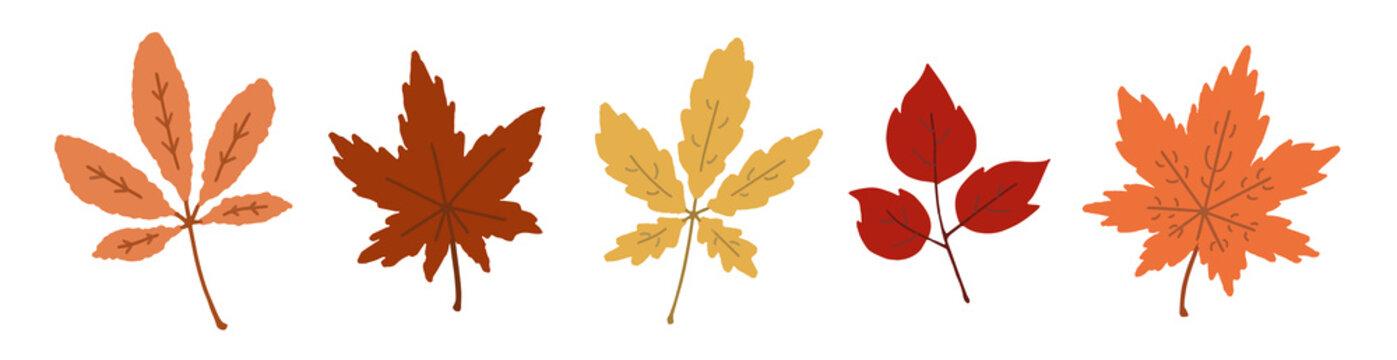 秋の葉の手描き風イラスト