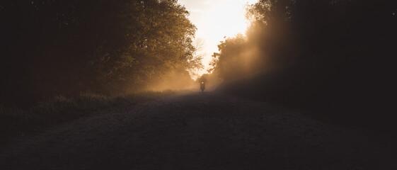 Obraz Jazda motocyklem o zachodzie Słońca pośród drzew - fototapety do salonu