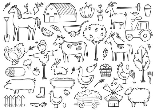 Hand drawn set farm animal, horse, cow, farmer food. Doodle sketch style. Agriculture life background, icon. Isolated vector illustration.