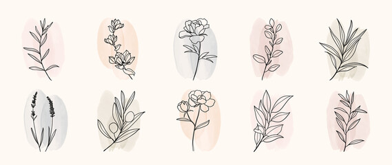 Obraz Minimal botanical hand drawing design for logo and wedding invitation. Floral line art.  Flower and leaves on watercolour background design collection for bouquets decoration, invite, packaging design - fototapety do salonu