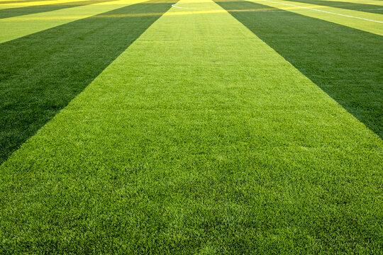 Sport Soccer Stadium Football Ball Football Goal Net Green Field Grass Artificial Lawn Arena