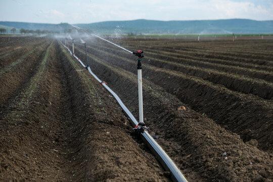 Water sprinklers irrigating a freshly plow farmland