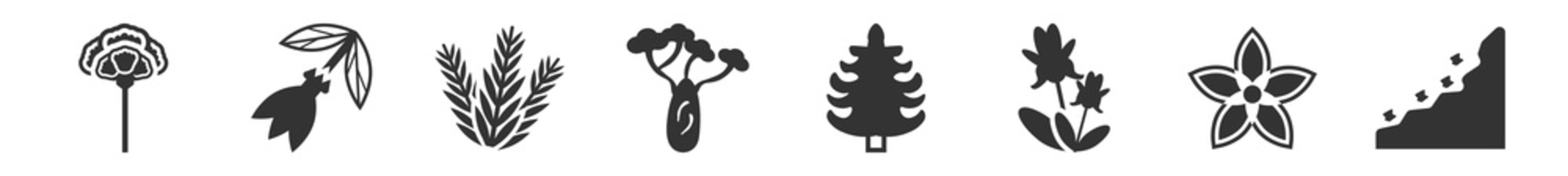 filled set of nature icons. glyph vector icons such as carnation, ylang-ylang, rosemary, baobab, cedar, cliff. vector illustration.