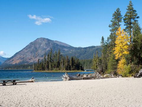 Fall foliage on the banks of Lake Wenatchee - Washington state, USA
