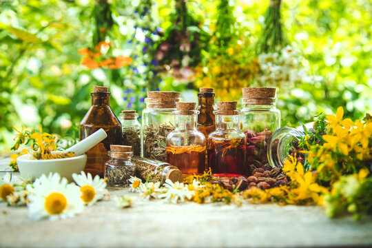 Tincture of medicinal herbs in bottles. Selective focus.