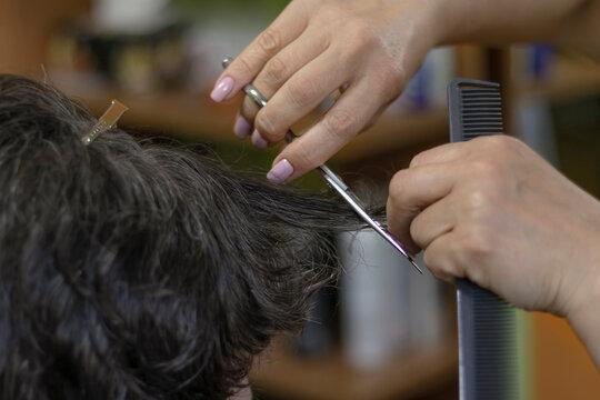 female hands doing a haircut on dark hair.