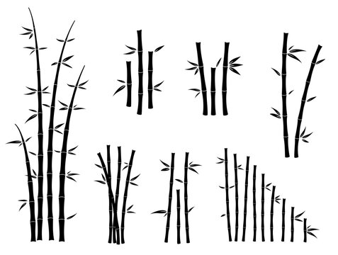 set of bamboo asian culture icons or asian bamboo silhouette isolated or various bamboo stalks and stems with leaves concept. eps vector