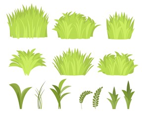 Set. Close-up of a meadow with dense grass. Wild green rural plants. Cartoon style. Flat design. Uncut lawn. Vector illustration. art