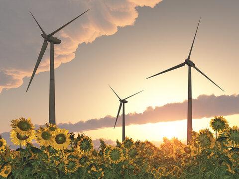 Windkraftanlagen in einem Feld mit Sonnenblumen bei Sonnenuntergang