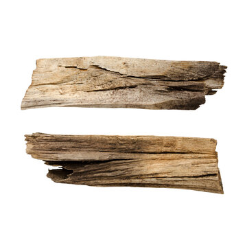 Wooden splinter or piece of bark isolated on white background. Items for mock up, scene creator and other design