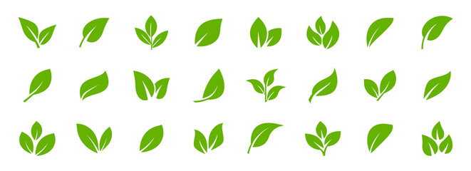 Set of green leaf icons. Leaves of trees and plants. Leaves icon. Collection green leaf. Elements design for natural, eco, bio, vegan labels. Vector illustration.