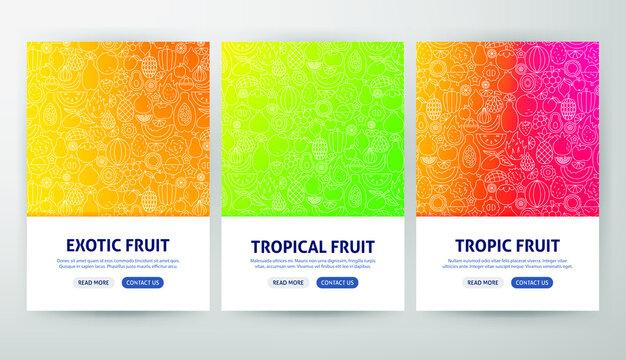 Tropical Fruit Flyer Concepts. Vector Illustration of Outline Design.