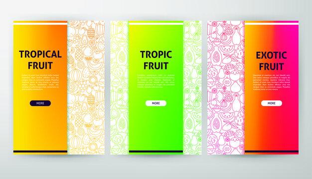 Tropical Fruit Web Design. Vector Illustration of Outline Posters.