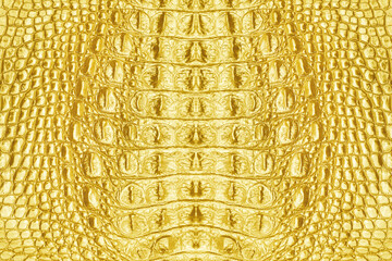 gold leather crocodile texture abstract background for design.