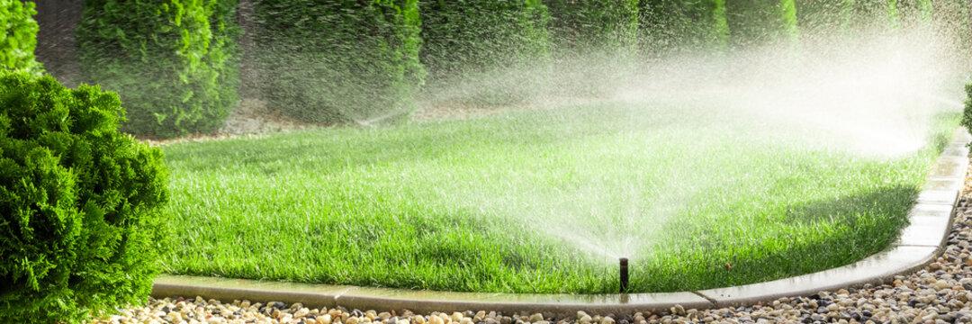 Sprinklers watering grass, green lawn in garden