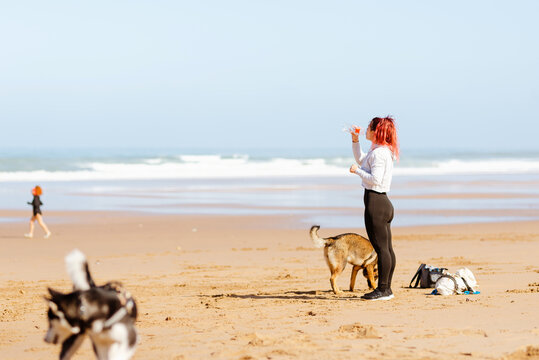 Sportswoman drinking water on sea shore with purebred dogs