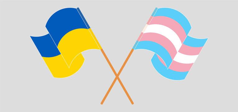 Crossed and waving flags of Ukraine and transgender pride