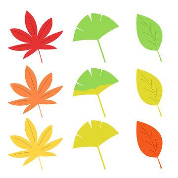 秋の葉っぱ 線無し